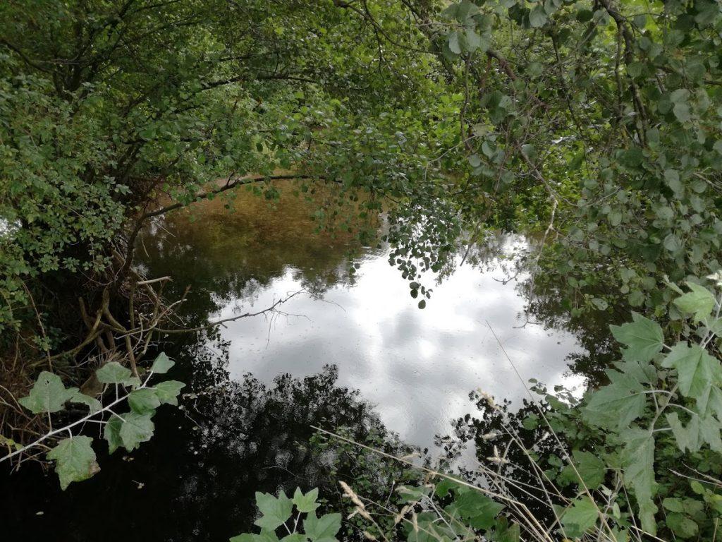 Rio Piles a su paso por el parque Flivial